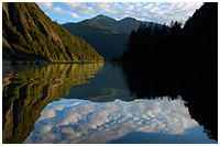 Reflections on Life in the Great Bear Rainforest