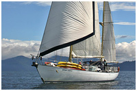 The Beautiful Ocean Light II Under Sail in Gwaii Haanas